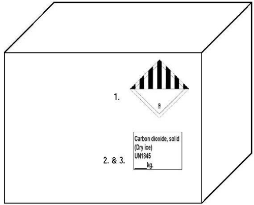 diagram of dry ice shipping box