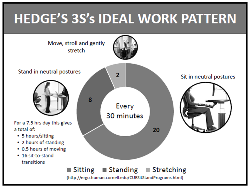 ergonomics hedge s ideal work pattern